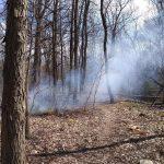 bonfire at missile ridge disc golf course